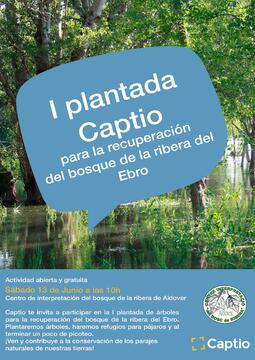 I_plantada_recuperacion_bosque_ribera_ebro_CAPTIO